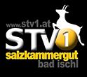 Partner - Salzkammergut TV