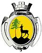 Wappen Gemeinde Bad Ischl